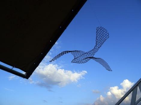 bird flies away
