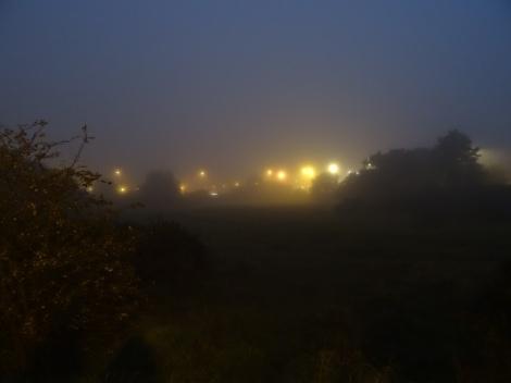 Light drops in the mist